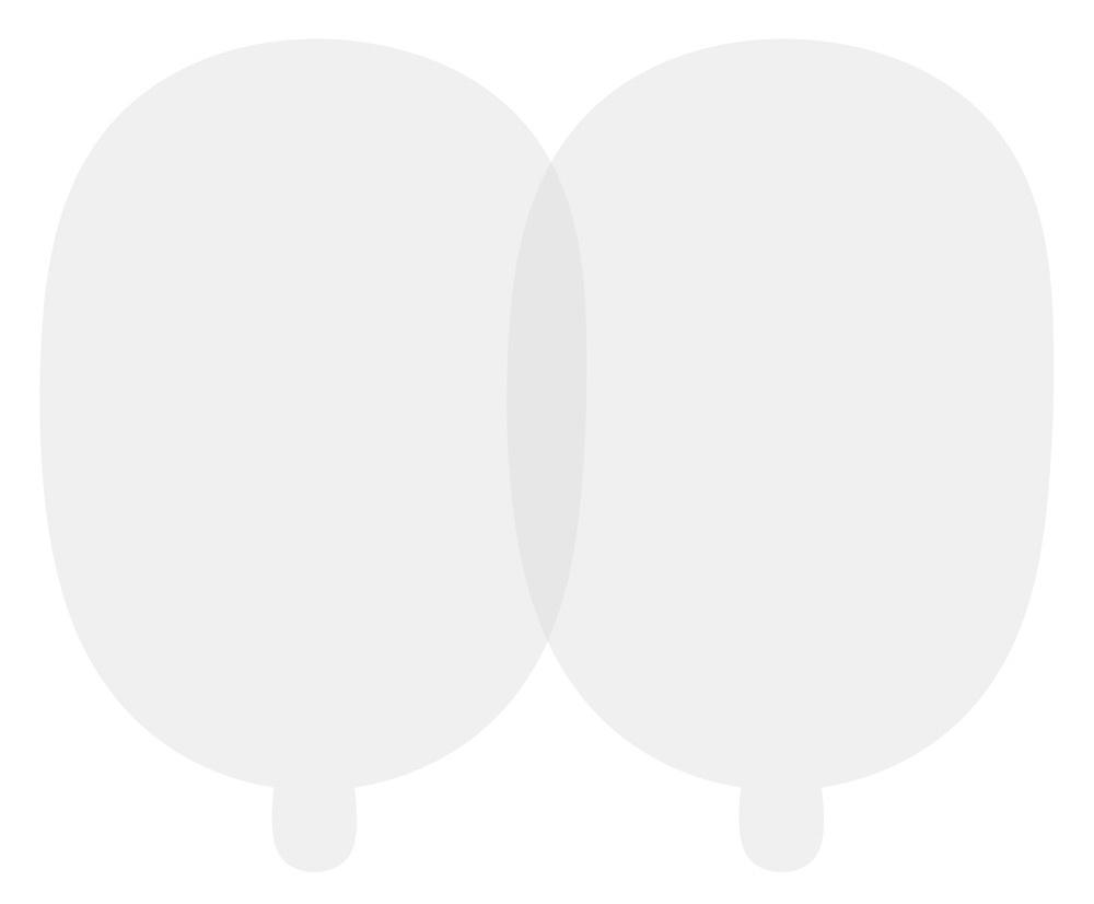Комплект статических наклеек (2 шт.)